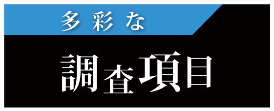 名古屋の解決探偵、高田幸枝調査事務所 調査項目